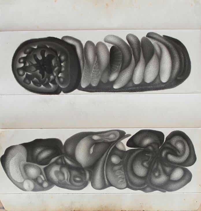 Wu Meifei: Untitled, pencil on paper, 25x27cm