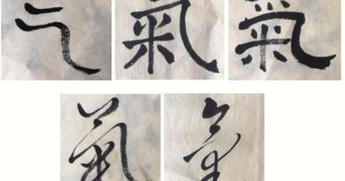 scripts by Hajin